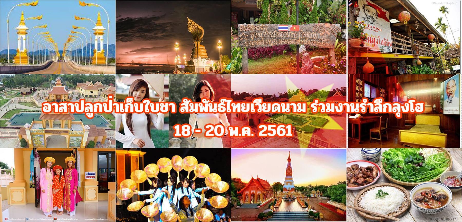 อาสาปลูกป่าเก็บใบชา สัมพันธ์ไทยเวียดนาม ร่วมงานรำลึกลุงโฮ