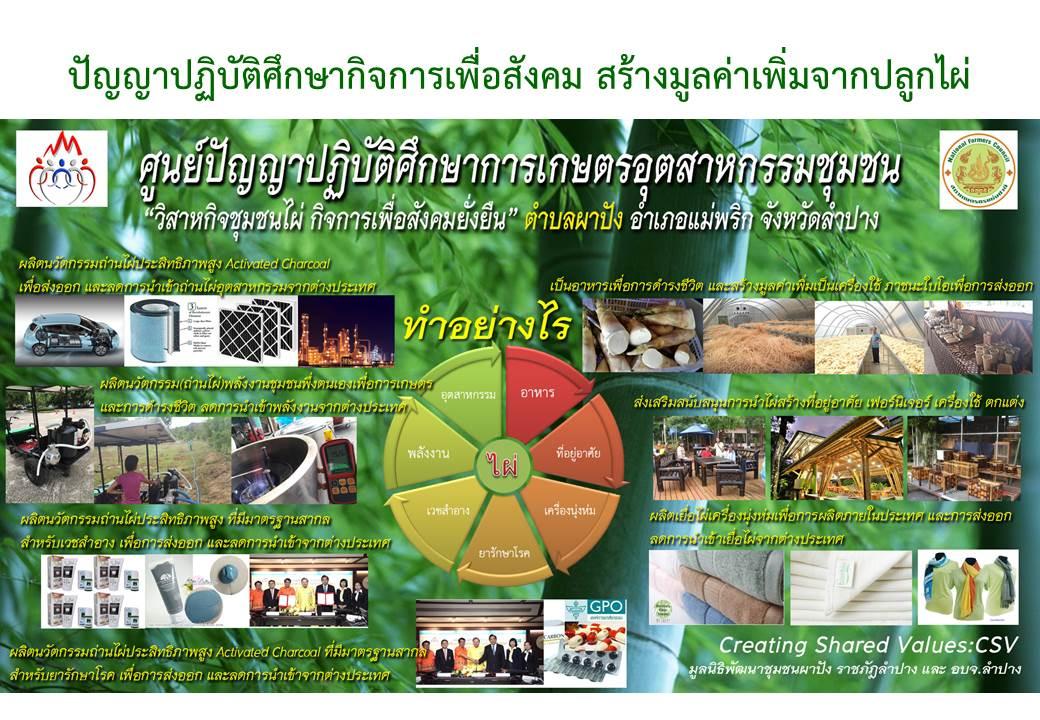 มูลนิธิพัฒนาชุมชนผาปัง